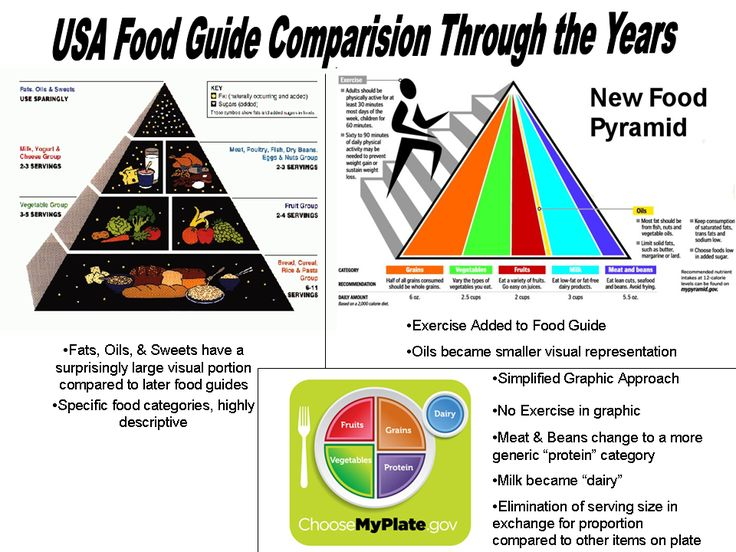 Food Guide Comparision Through The Years Family And