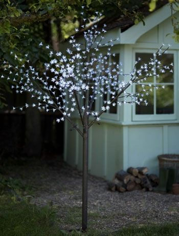 1000 Ideas About Lights In Trees On Pinterest Outdoor