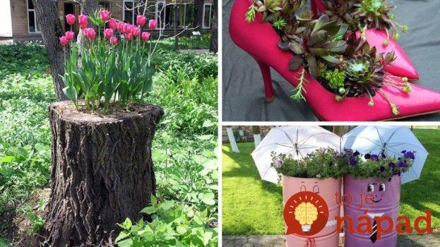 Krásne nápady do vašej záhrady. Pozrite si ich viac na http://tojenapad.dobrenoviny.sk/31-krasnych-napadov-do-vasej-zahrady/ #garden #zahrada #tojenapad #diy #urobsisam #plants #flowers #kvety