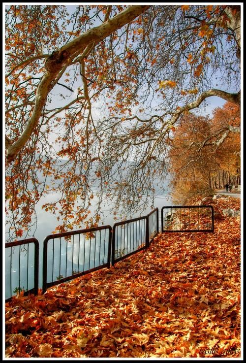 Autumn in Kastoria  by Vasilis Gkikas on panoramio.com