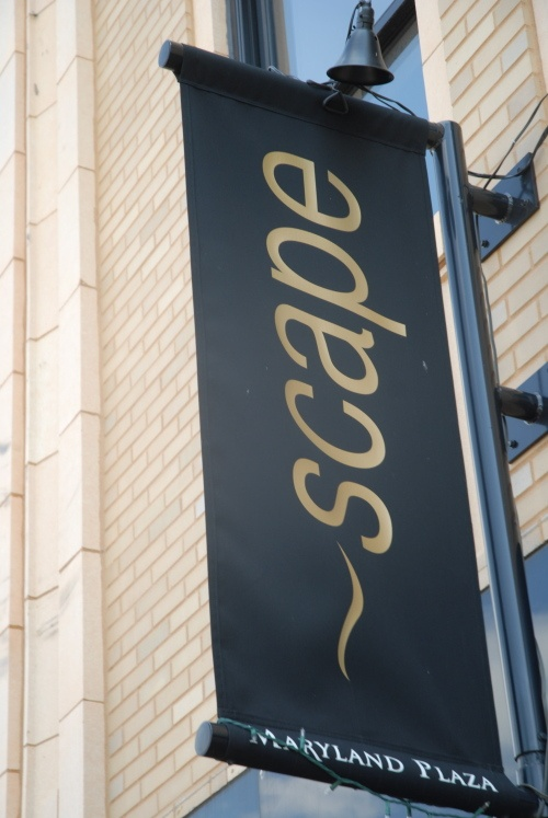 Scape, which opened in October 2007, is conveniently located in the Central West End's historic yet hip Maryland Plaza.