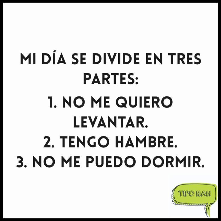 Mi día se divide en tres partes:  1. No me quiero levantar. 2. Tengo hambre. 3. No me puedo dormir.  #chistes #gracioso