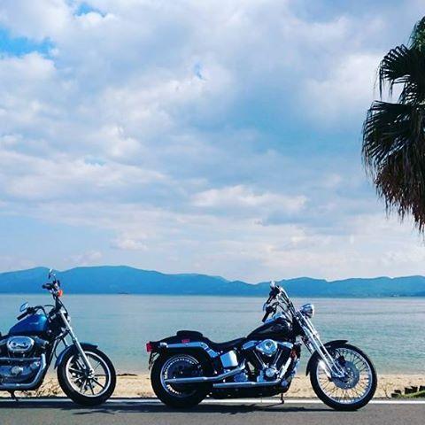 【sa__pi__】さんのInstagramをピンしています。 《#haraydabidoson #harley #fxsts #softail #springersoftail #evolution #xlh883 #xlh #sportsstar #touring #motorcycle #ocean #ハーレーダビッドソン #ハーレー #ソフテイル #スプリンガーソフテイル #エボリューション #スポーツスター #海 #海岸 #海岸線 #砂浜 #ツーリング #バイク #ヤシの木》