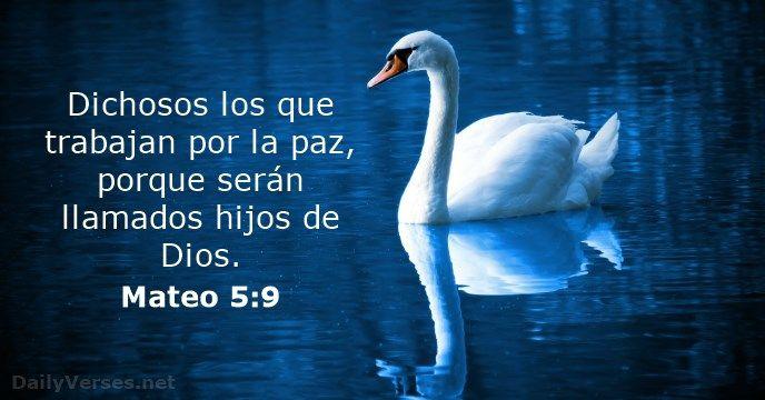 Dichosos los que trabajan por la paz, porque serán llamados hijos de Dios.