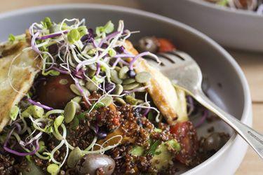 Warm quinoa, roast pumpkin, avocado and haloumi salad with sprouts