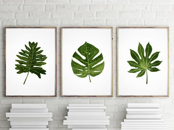 Set of 3 Palm Tree Leaf Monstera Tropical Aralia Leaf Herb by LadyWatercolor | Etsy #monstera #deliciosa #tropical #leaf #aralia #watercolor #illustration #decor #painting #poster #art #prints #palmtree #herb