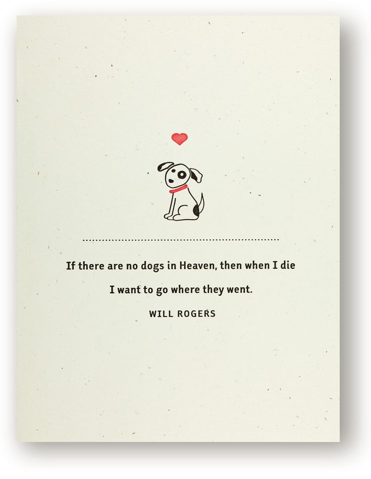 And Quotes Heaven Sayings Dog