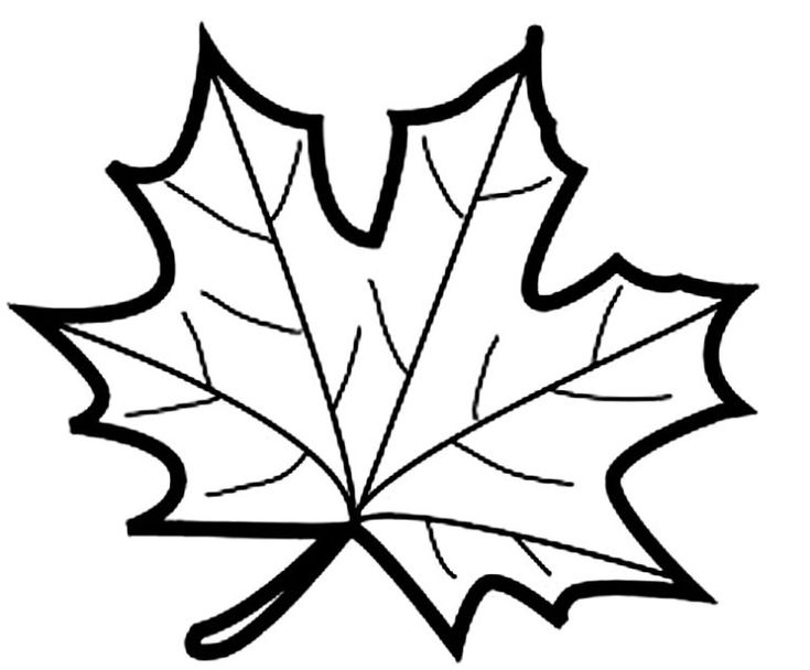 шаблоны листьев кленовый | Листья, Трафареты, Шаблоны