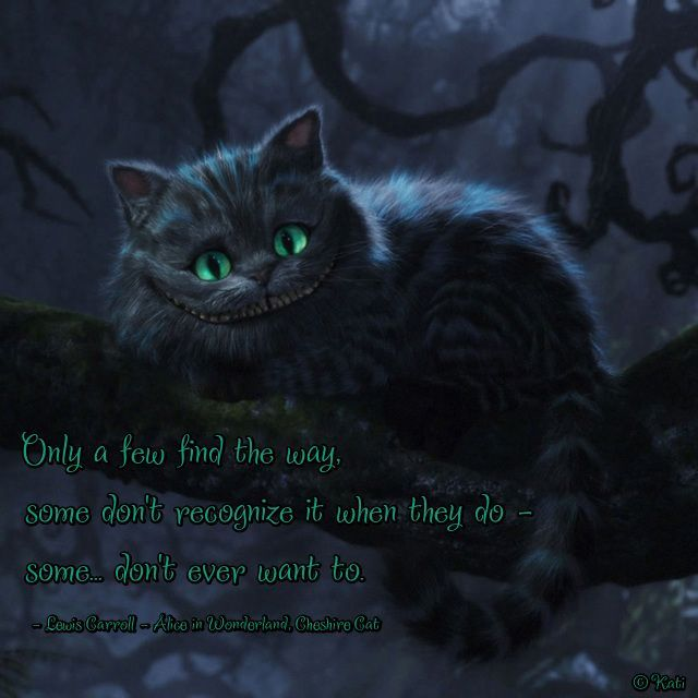 Alice in Wonderland-<b>Cheshire cat   Quotes</b> and pictures   Pinterest