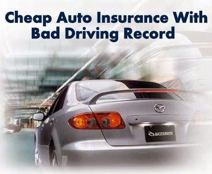 car insurance with the best customer service