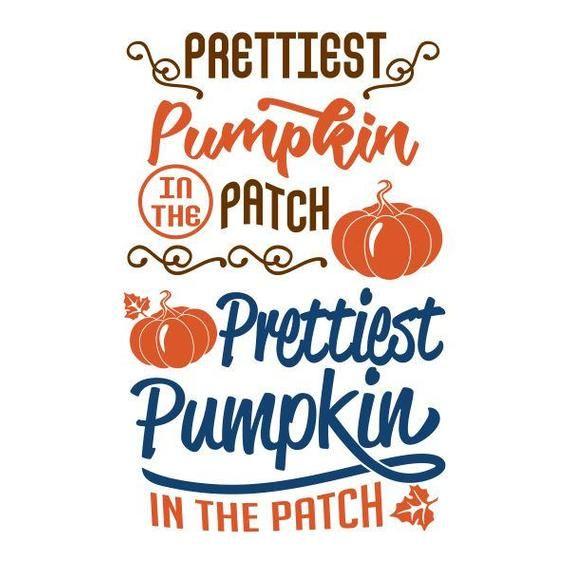 Prettiest Pumpkin In The Patch Thanksgiving Cuttable Design Etsy In 2021 Pretty Pumpkins Thanksgiving Design Lettering Alphabet