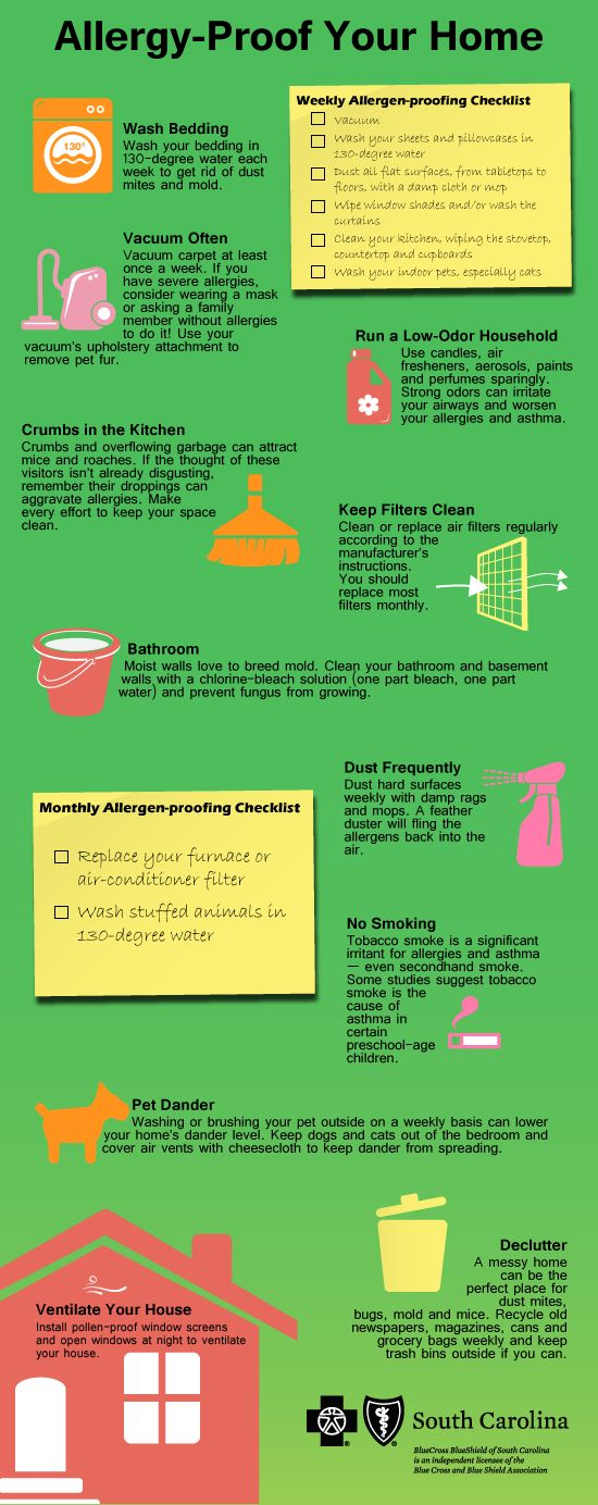 "South Carolina Blues - ""Allergy-Proof Your Home"" Infographic"