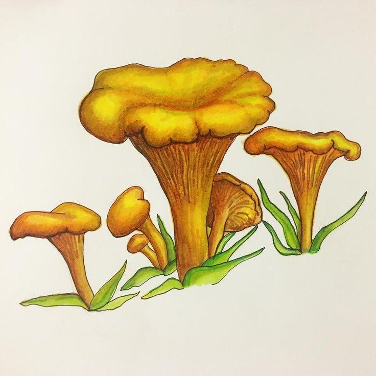 Картинка гриб лисичка анимация, цветы