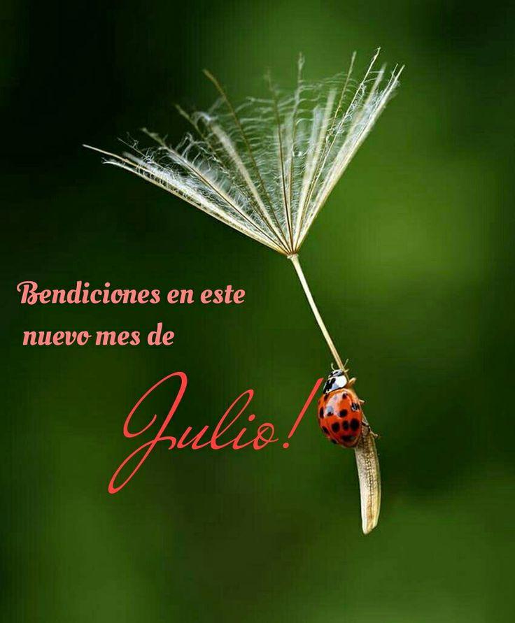 Bendiciones para todos!!! (¯`´¯) BIENVENIDO JULIO !! (¯`¯) `*.¸.*´........................................ `*.¸.*´