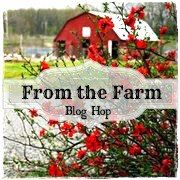 Hawthorn berries: identify, harvest, and make an extract - One Acre Farm