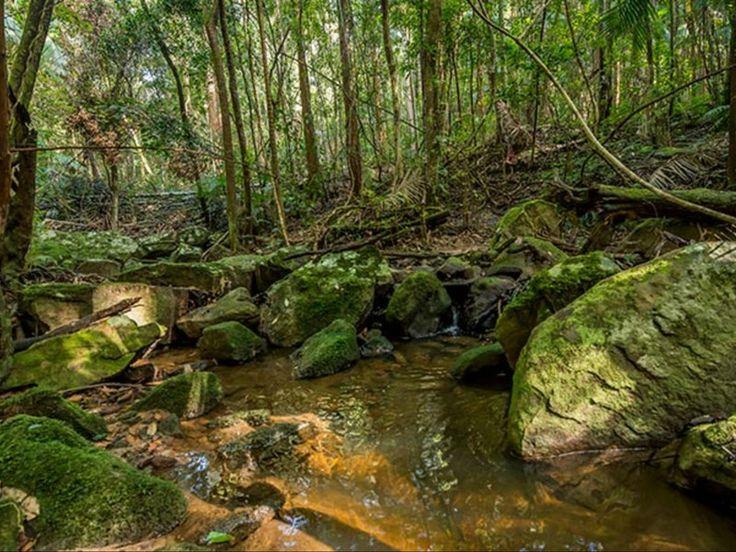 Palm Grove Nature Reserve