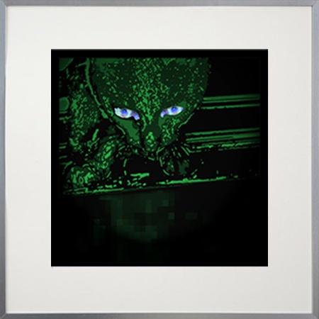 CAT ON A ROOF dim 50x50cm avec cadre bois 70x70cm coloris argent