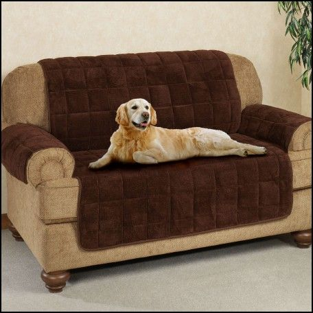 Pet Couch Covers Sale