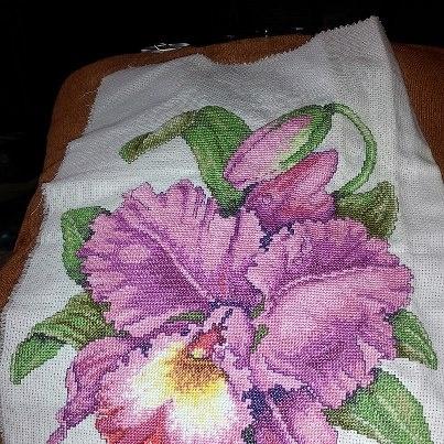 Orchid cross stitch.