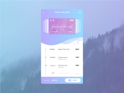 A Concept of Credit Card Payment