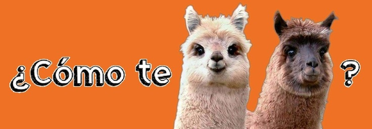 ¿Cómo te llamas? en Español. LOL! This would make a cute card for my Spanish speaking missionary.