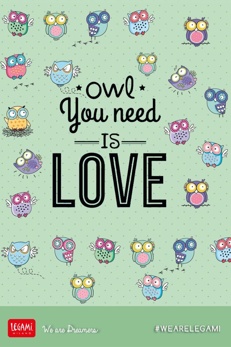 Owl You need Is Love 💞💞💞  #wearelegami #owl