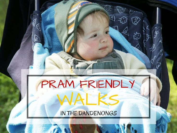 Pram Friendly Walking in the Dandenong Ranges Pram friendly walks are easy to find in the Dandenongs, some are reasonably level, others are definitely more of a challenge. Family walking is an idea…