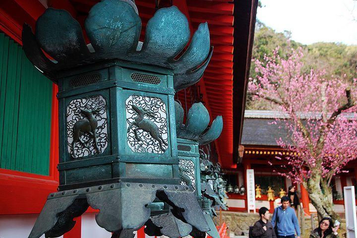 奈良の人気観光スポット43選!定番から穴場までおすすめランキング | RETRIP[リトリップ]