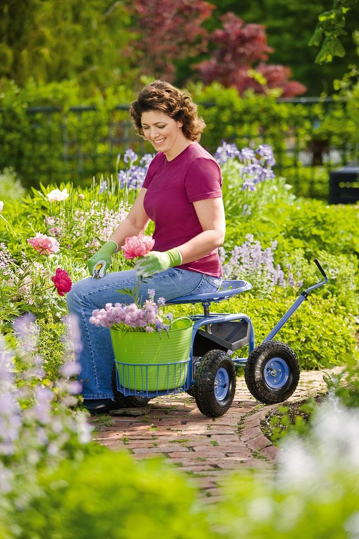28 best gardening for the elderly images on Pinterest ...