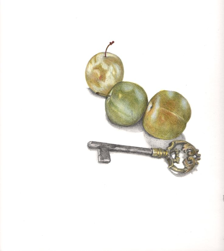 key and plums. By sena Cifuentes