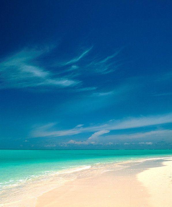 Caicos Beach - Google Search