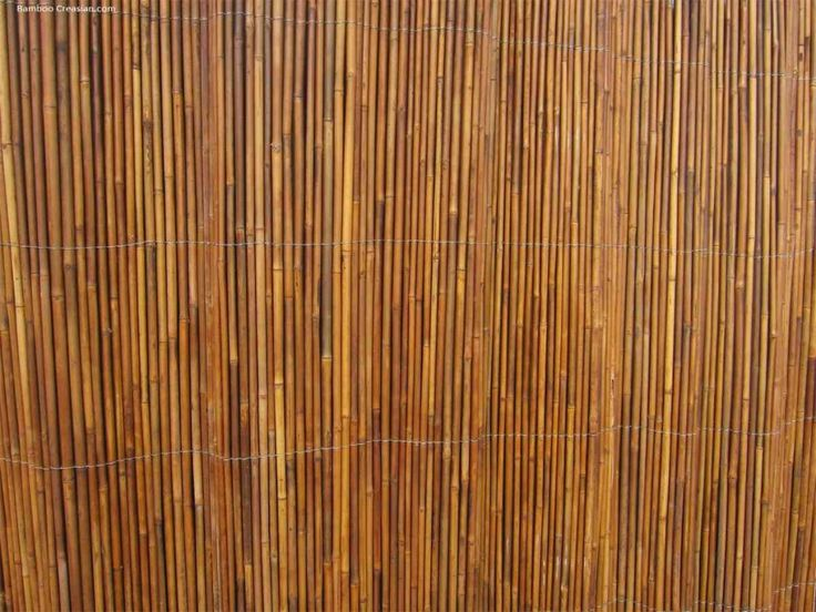 bamboo wall covering bamboo wall bamboo wall decor on wall coverings id=35783