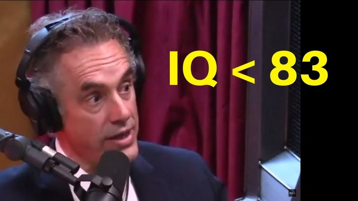 what does it mean to have an IQ less than 83 - Dr. Jordan Peterson & Dr....