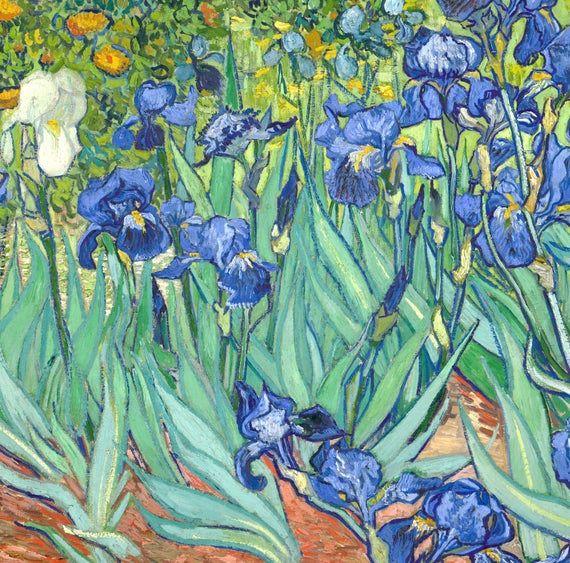 Vincent Van Gogh Fine Art Print Irises Flower Field Landscape In 2021 Famous Impressionist Paintings Art Art Prints