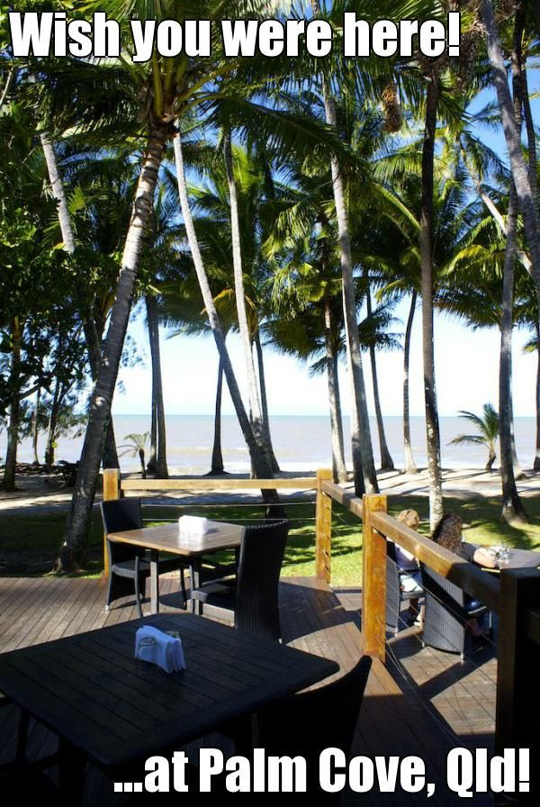 Wish you were here! ...at Palm Cove, Qld! http://www.fnqapartments.com/accommodation-palm-cove/