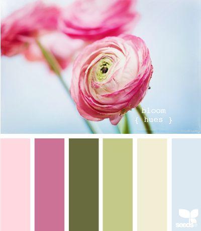 bloom hues
