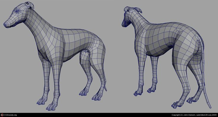Greyhound by John Saleem | 3D | CGSociety
