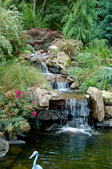 Sloped garden with waterfall