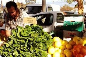 Adelaide Farmers Market  http://www.fishermenswharfmarkets.com.au/Home/Home.asp
