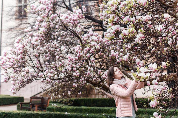 Portrait shooting in Prague More info: Direct @alenagurenchuk +420608916324(WhatsApp/Viber) ✉alena.gurenchuk@gmail.com alenagurenchuk.com/pages/contact/ ~~~~~ Photo in category: #alenagurenchuk_woman ~~~~~ #alenagurenchuk #photographerprague #prague #Прага #фотографвпраге #фотографвчехии #фотопрогулкапопраге #фотосессиявпраге #фотографпрага #фотосессияпрага #fotografpraha #fotografvpraze #praha #focenivpraze #프라하 #プラハ #布拉格 #wonderful_places #living_europe #praguestagram #hello_worldpics…