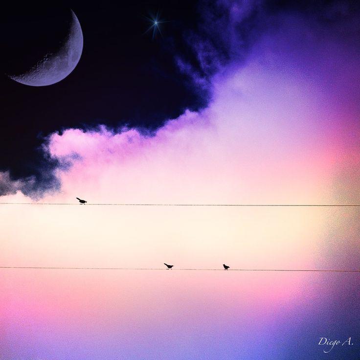 Sueños y más sueños.