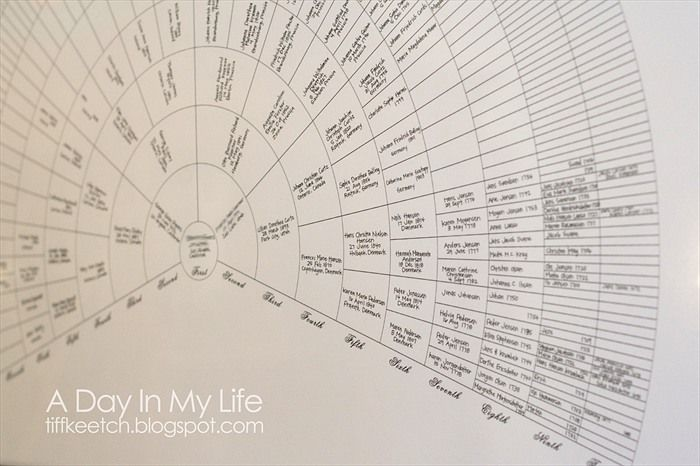 I have to do this...  Semicircular genealogy chart.