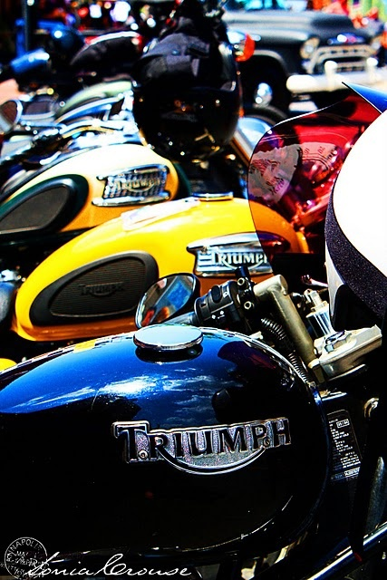Triumph. Craig has had two. First was the Legend he wrecked in '05. Today he has a Thunderbird Sport.