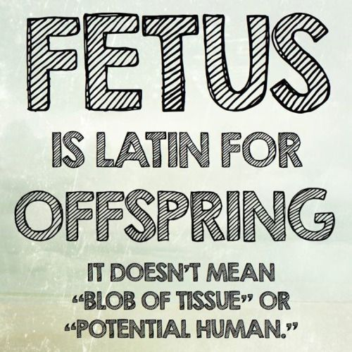 """""""Fetus is the """"N-Word"""" of the Pro-Choice movement. It is used to diminish and degrade a certain group of humans and to perpetuate a cycle of violence and denial of human rights."""""""