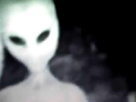 Amazing Real Alien Footage