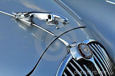 jaguar art | distinctive leaping jaguar mascot http en wikipedia org wiki jaguar ...