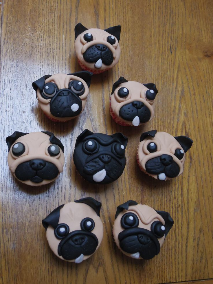 Pug Cupcakes testing out a few styles