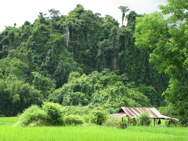 Thailand Tours of Chiang Mai by Easy Tours of Thailand