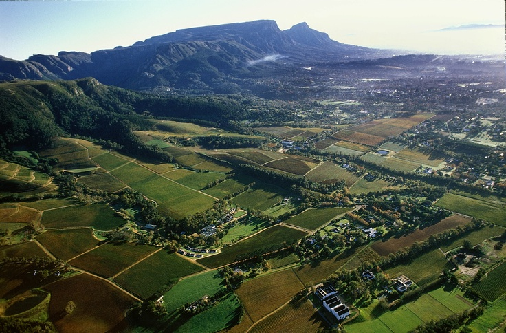 View of the Constantia Valley