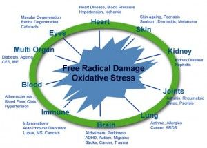 Oxidative Stress http://nrf2activatorx.info/nrf2-activator-x-the-best-product-against-inflammations-and-oxidative-stress/